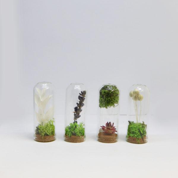 mini cloche de fleur